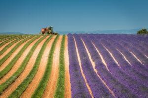 Magnetický polarizační filtr na focení v Provence