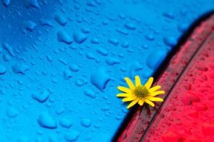 Jak fotí studenti z kurzu Naučte se používat barvu kreativně?!