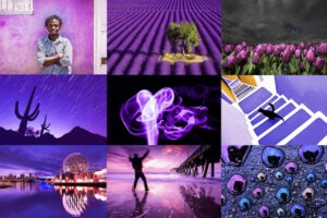 Téma Fotoprojektu 52/2021 - MILUJEME MONOCHROMATISMUS (37/52)